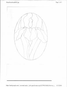 2016 Advanced Modified Iris